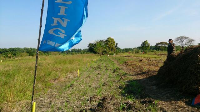 Foto: Jual Tanah Kavling Menganti